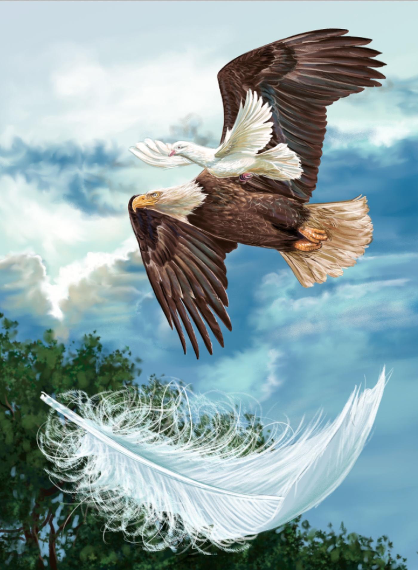 L'aigle Bouchard Québec Illustration La Et Jocelyne Colombe 1tB6xzqw