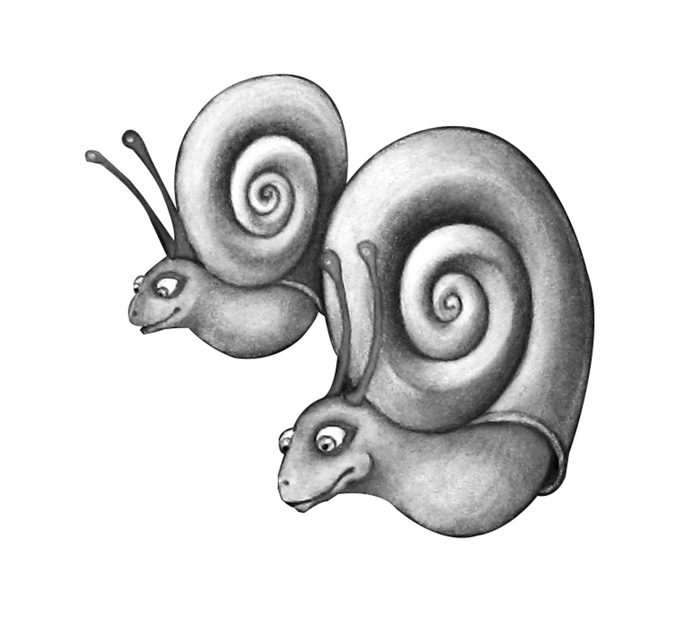 Angela Oliynyk - Escargots : Snails