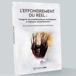 LEsprit_LEffondrement3D-A