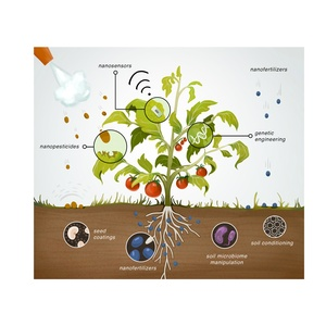 Potential application of nanotechnology in plant agriculture - publié dans Nature food