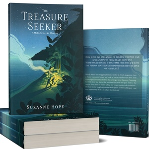 Treasure Seeker - Livre