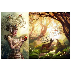 Illustrations Carowings et Golden forest